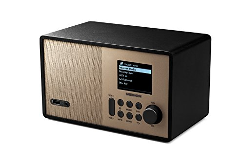 MEDION E85059 MD 87559 Internetradio, 2,4 Zoll TFT Farb-Display, 40 Speicherplätze, Holzgehäuse, USB, champagner - 3